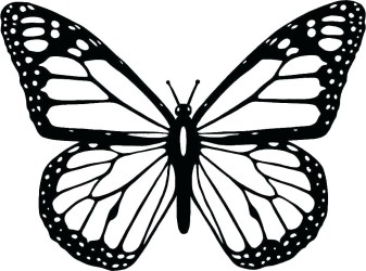 Outline Simple Black And White Butterfly Tattoo tattoo design
