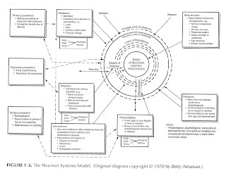 Nursing Theories: Betty Neuman's Systems Model