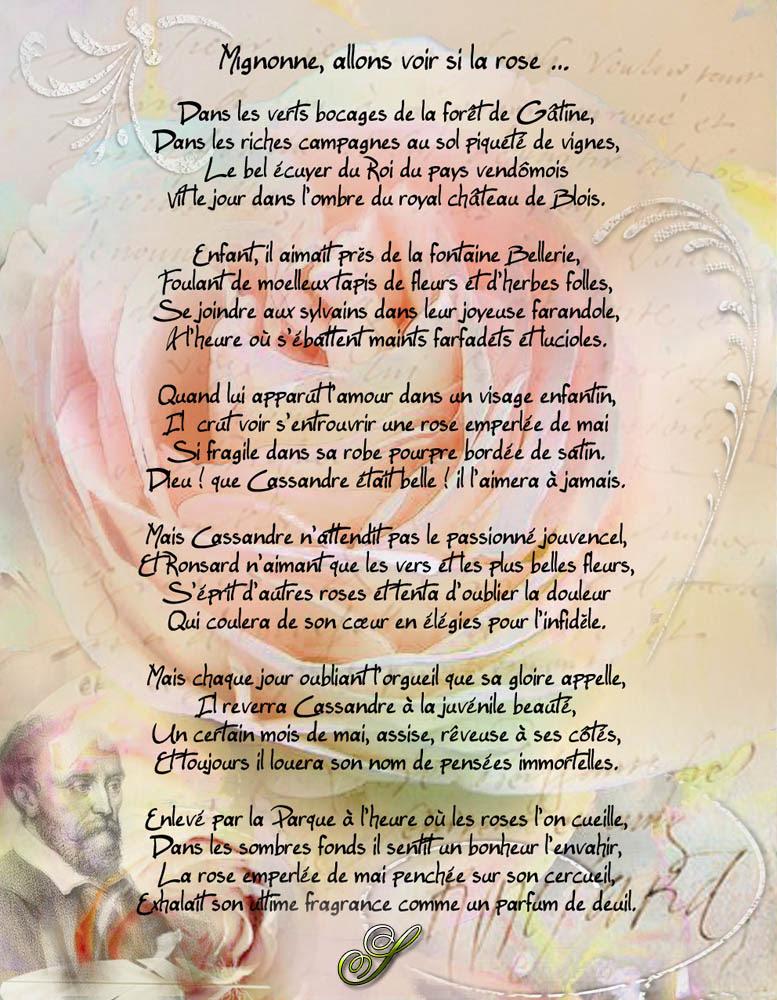 Mignonne Allons Voir Si La Rose Analyse : mignonne, allons, analyse, Mignonne, Allons, Ronsard, Images