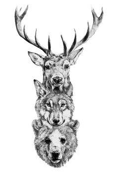 Animal Head Tattoo : animal, tattoo, Animal, Tattoo, Ideas