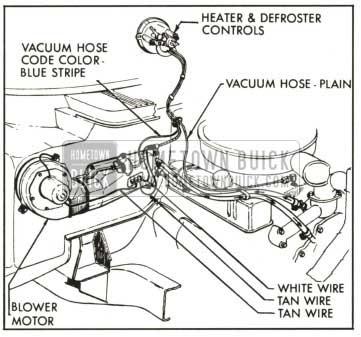 Wiring 110v Plug