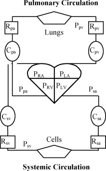 Secret Diagram: Knowing Schematic diagram qualitative analysis