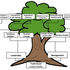 Tree Diagram Game 1999 323i Fuse Box Family Template