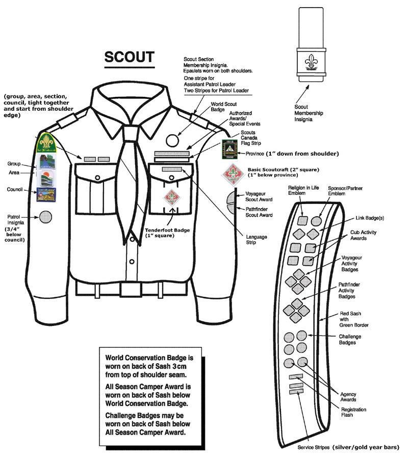 Scouts And Guides Drawing