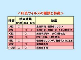 肝臓がん(肝臓癌)の治療と病院: D型肝炎とは