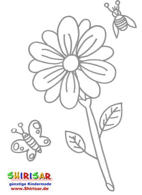 Malvorlage Schmetterling Din A4 - Kostenlose Malvorlagen Ideen