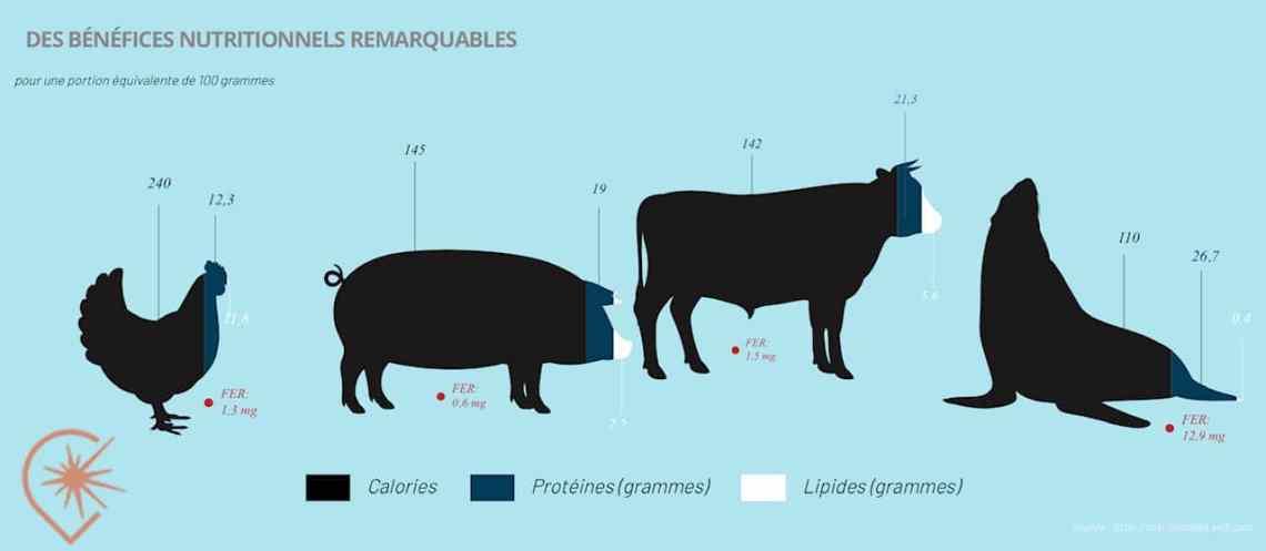 Rendez-vous Loup-marin les qualités nutritives de la viande de phoque