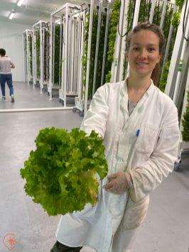 Marianne, ingénieure agronome venue prêter main forte à Ligne Verte, Crédit photo HDE