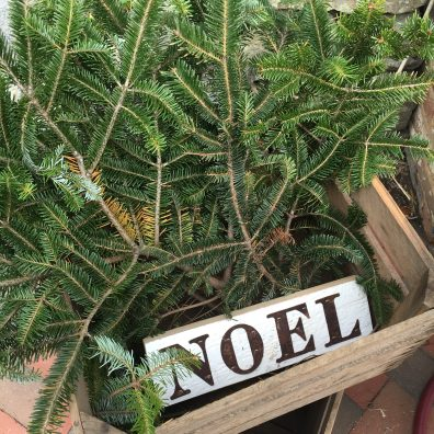"rustic holiday sign on wood panel that reads ""noel"""