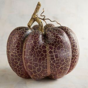 small-plum-crackle-pumpkin