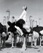 Wenda andOstriches, South Africa, Vogue 1951