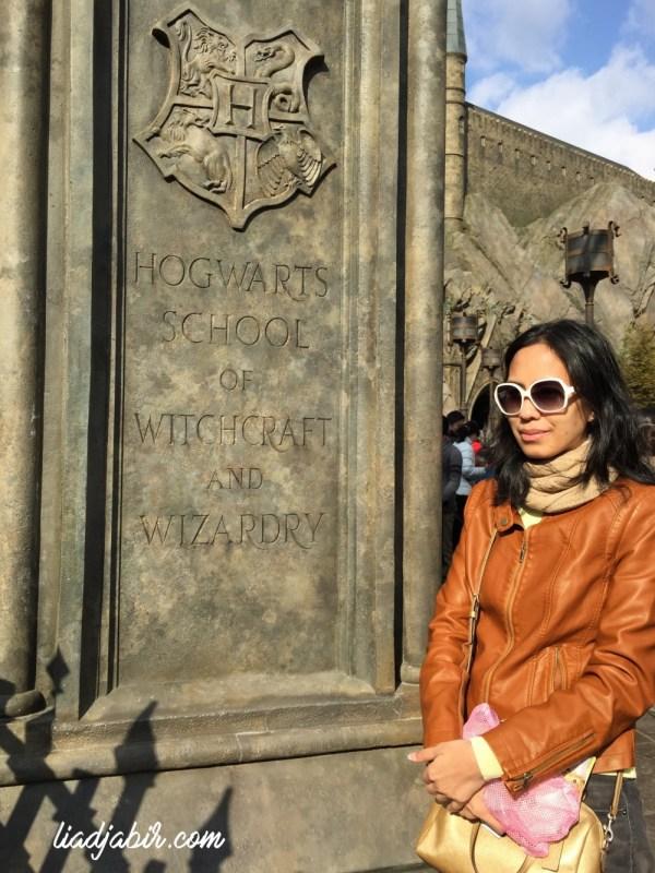Pintu gerbang Hogwart