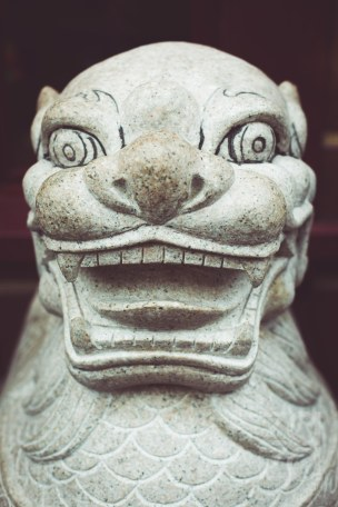 ZAZA Photography -- ABOUTLIAKOTH - China Town -- Chinese New Year 2015 -- London-40