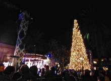 Fashion Island Tree Lighting 1
