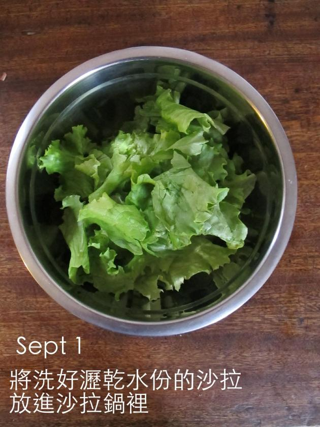 夏日快速沙拉Salade