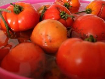 法國家常料理-無水番茄湯Soupe tomates-5