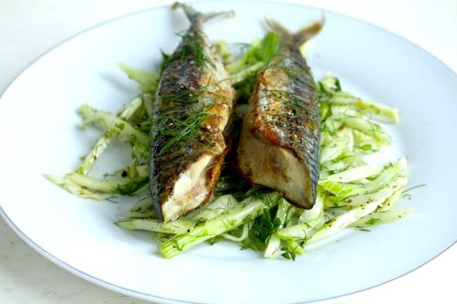 烙煎鯖魚佐茴香沙拉 Maquereau au poêle et salade feuilles
