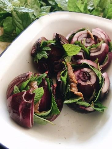 紅洋蔥薄荷鯷魚