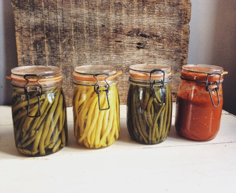 蔬菜在我的罐子裡