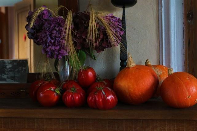 番茄&南瓜