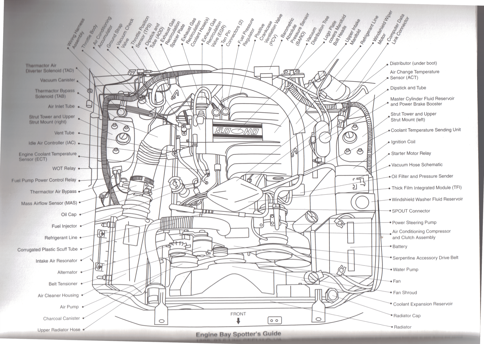 hight resolution of 1987 1993 foxbody 5 0 sefi v8 engine part diagram