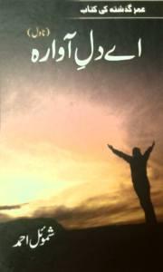 اے دلِ آوارہ، حصہ دوم ۔۔۔۔ شموئل احمد