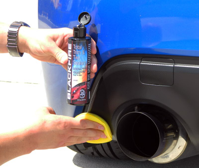 Auto Trim Amp Molding Guide Clean Amp Protect Exterior Vinyl