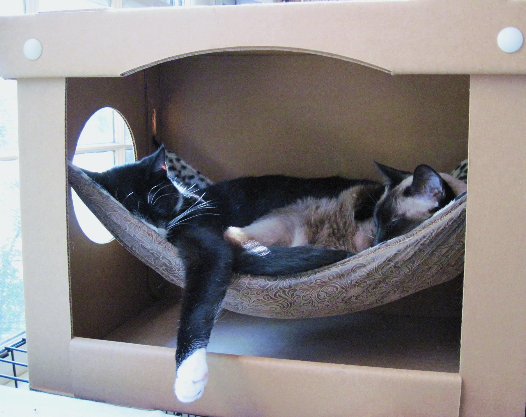 cat hammock under chair most comfortable desk chairs in a box