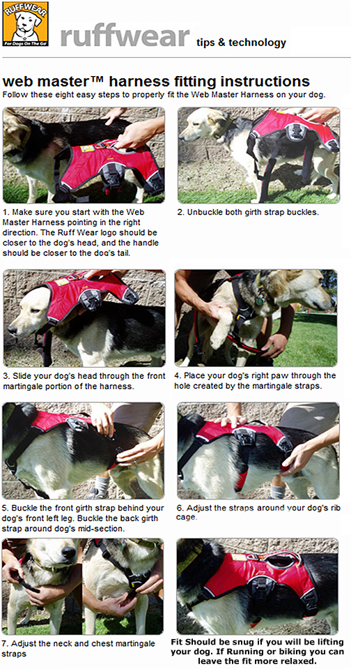 Ruffwear Web Master Padded Dog Harness With Built In