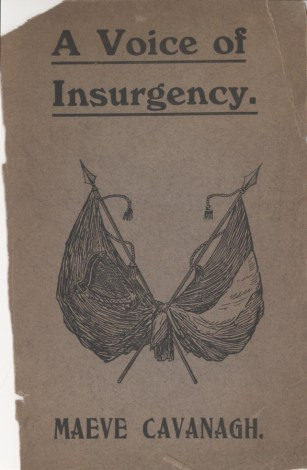 A Voice of Insurgency