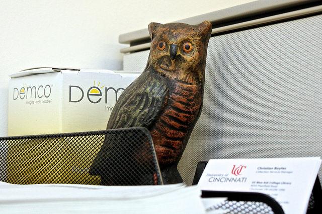 Decorative owl.