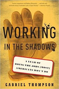 Working in the Shadows book cover