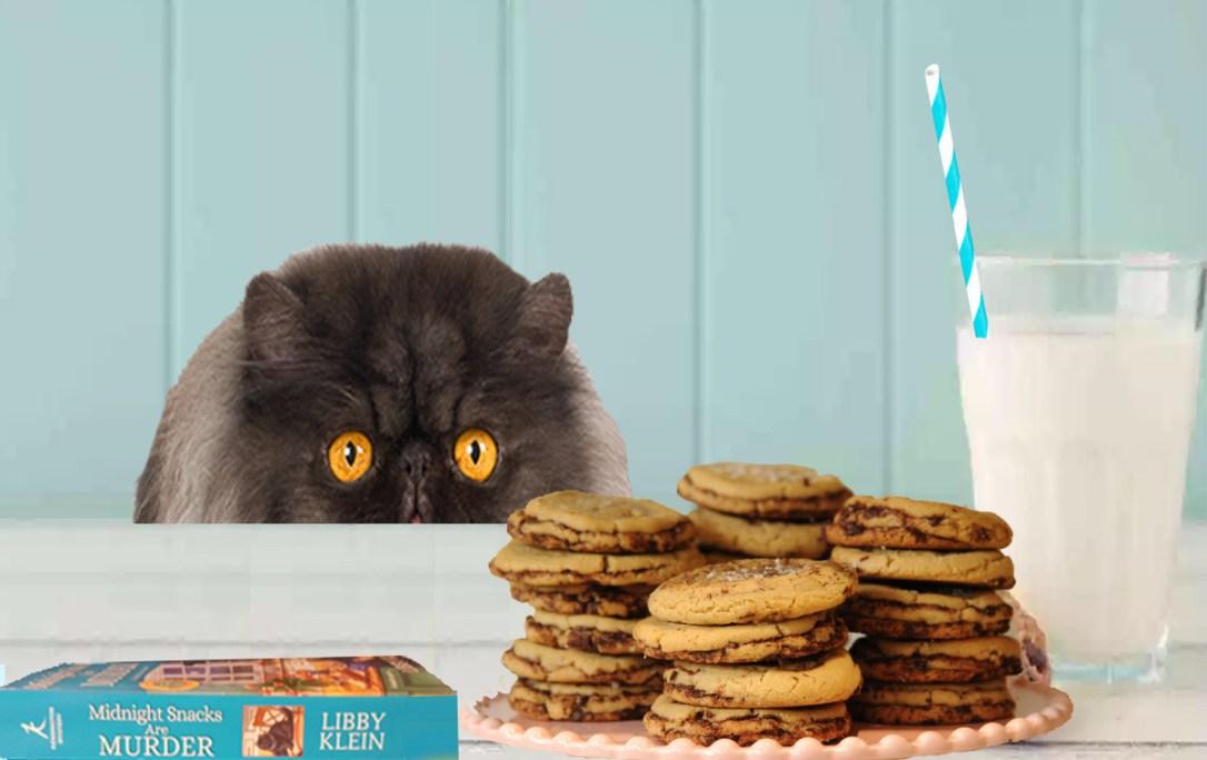 choc chip cookie day