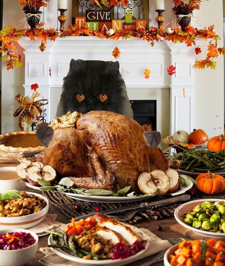 Thanksgiving fig