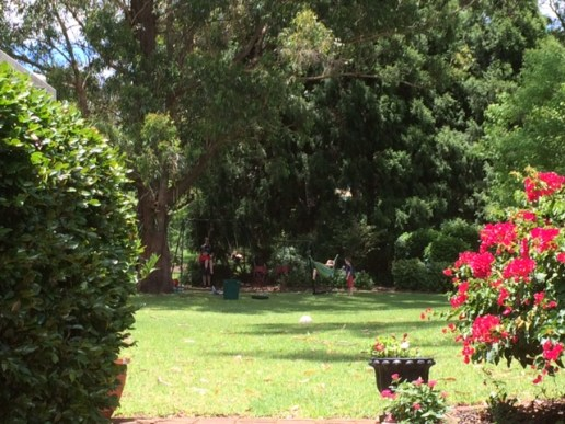 Part of my parents' back yard haven.