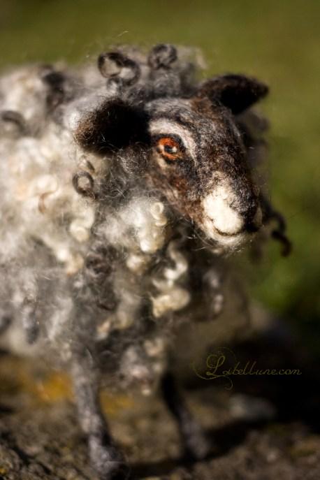 Mouton en laine feutrée