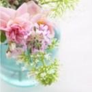 bottles_flowers_02