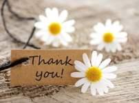 ママやチーママに褒められた!「ありがとう」以外の言葉はある?
