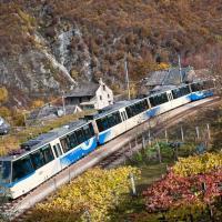 Ferrovia Vigezzina-Centovalli: 52 km circondati dai boschi