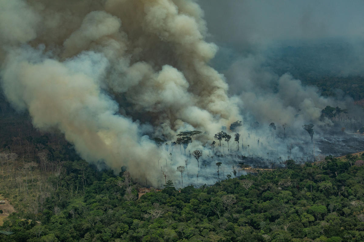 Greenpeace captures images of fires in the Amazon