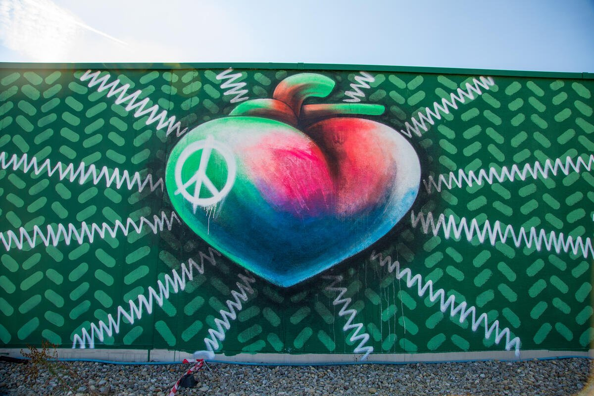 'Artivists' create giant murals around the world as part of Greenpeace's 50th anniversary