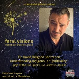 fv_podcast_david