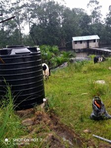 Jubilation As Yokiri Community Chairman Provides Water Tank, Lays Pipes To Ease Toilet – The Liberator