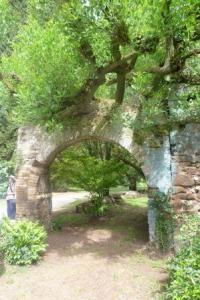 Ninfa arch + tree sml