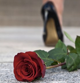 woman walking away from red rose on ground
