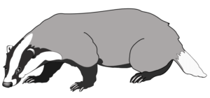 badger traditionally associated with Argyll and Sutherland Highlanders