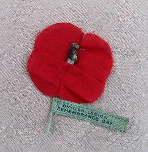 Armistice Day 1st poppies