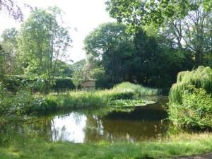 a Swanwick lake