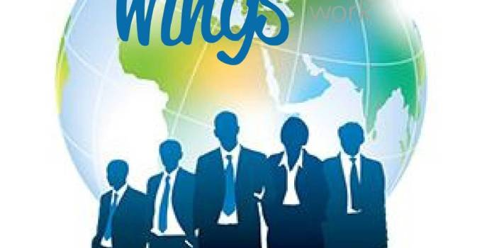 logo-wings