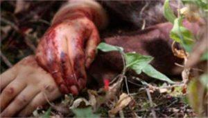 28-feminicidios